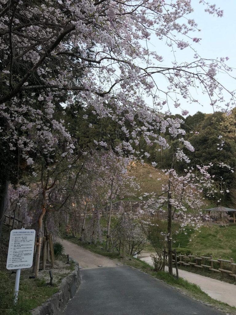 王義之と日本の書